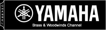 Yamaha BDS home page – sidebar