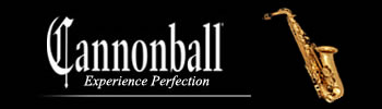 CannonBall – Homepage Sidebar