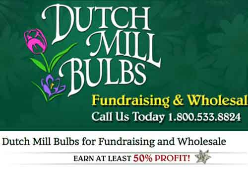 Dutchmill Bulbs – Fundraising After Slide Ad